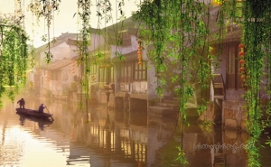Jiangnan is basking in the freshness of spring.江南已是霧春。